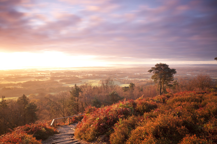 Leith Hill Autumn