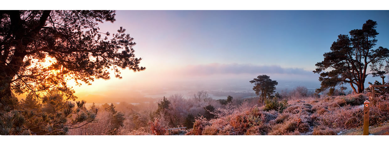Leith Hill Winter Dawn